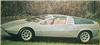 1970_VW-Porsche_tapiro.jpg